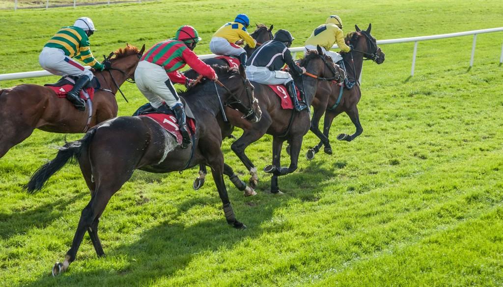 horseracing-idrive